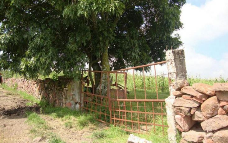 Foto de rancho en venta en sin nombre, la muralla, amealco de bonfil, querétaro, 2025870 no 18