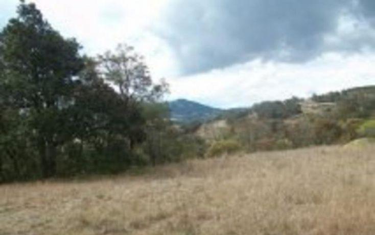 Foto de terreno habitacional en venta en sin nombre, san pedro tenango, amealco de bonfil, querétaro, 1335275 no 03