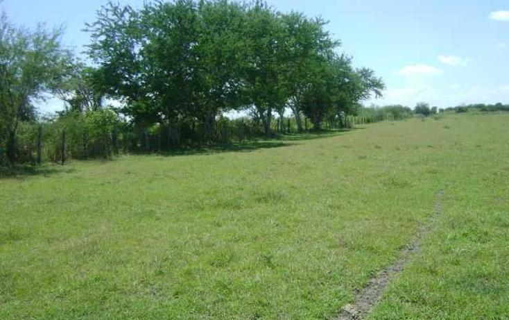 Foto de terreno habitacional en venta en  sin numero, guayalejo, pánuco, veracruz de ignacio de la llave, 998291 No. 03