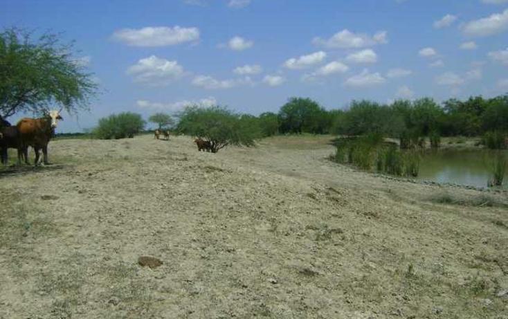 Foto de terreno habitacional en venta en  sin numero, guayalejo, pánuco, veracruz de ignacio de la llave, 998291 No. 06