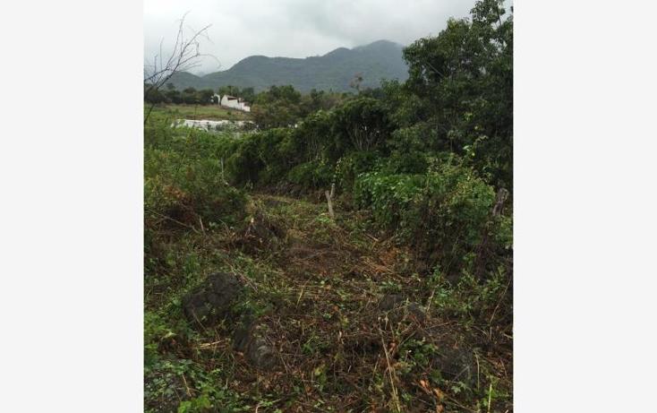 Foto de terreno habitacional en venta en  sin numero, jalmolonga, malinalco, m?xico, 1369405 No. 03