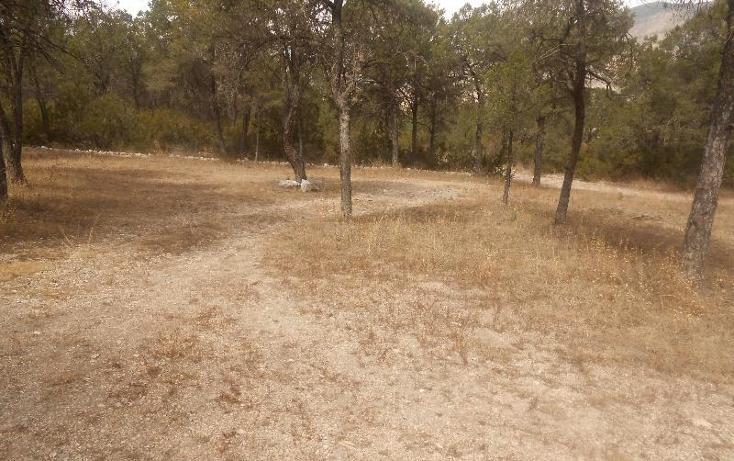 Foto de rancho en venta en sin sin, nuncio, arteaga, coahuila de zaragoza, 396964 No. 03