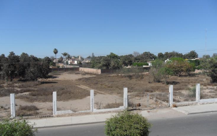 Foto de terreno comercial en venta en  , sinaloa, guasave, sinaloa, 1114459 No. 05