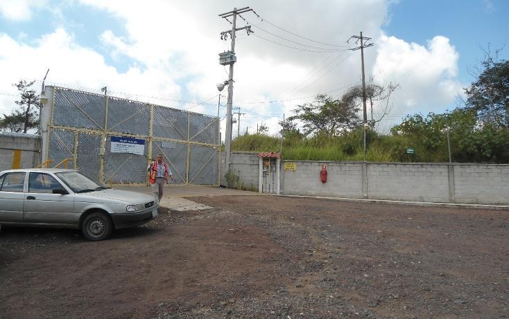 Foto de nave industrial en renta en  , sipeh ánimas, xalapa, veracruz de ignacio de la llave, 1279169 No. 03
