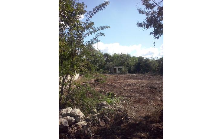 Foto de terreno comercial en venta en  , sitpach, m?rida, yucat?n, 1261329 No. 01