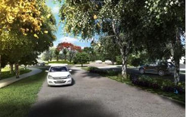 Foto de terreno habitacional en venta en  , sitpach, m?rida, yucat?n, 1485137 No. 09