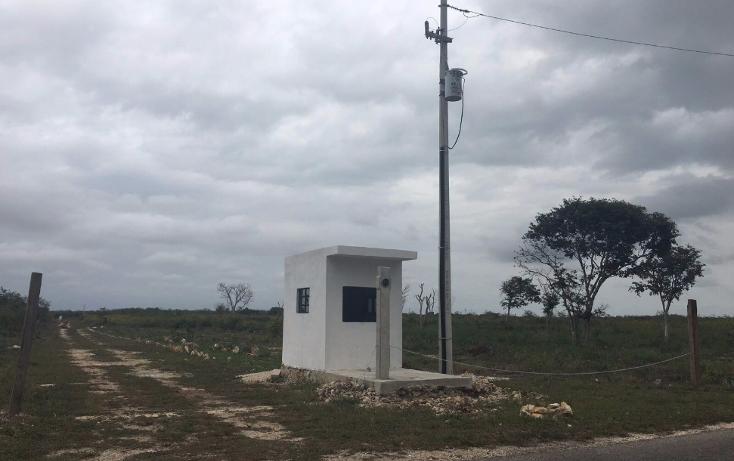 Foto de terreno habitacional en venta en  , sitpach, mérida, yucatán, 1615852 No. 06