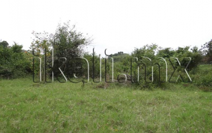 Foto de terreno habitacional en venta en sn, 23 de noviembre, tuxpan, veracruz, 852037 no 02