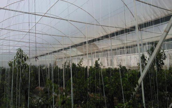 Foto de terreno comercial en venta en sn, ajolotla, chignahuapan, puebla, 1616872 no 03