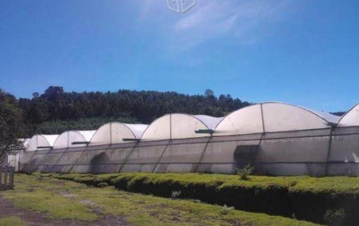 Foto de terreno comercial en venta en sn, ajolotla, chignahuapan, puebla, 1616872 no 09