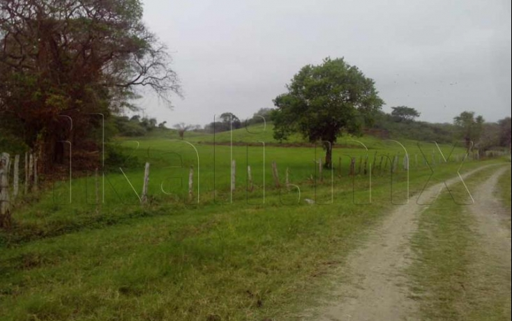 Foto de terreno habitacional en venta en sn, dante delgado, tuxpan, veracruz, 584004 no 02