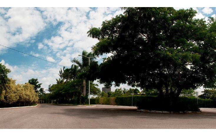 Foto de terreno habitacional en venta en  , ejido de chuburna, mérida, yucatán, 1833934 No. 03