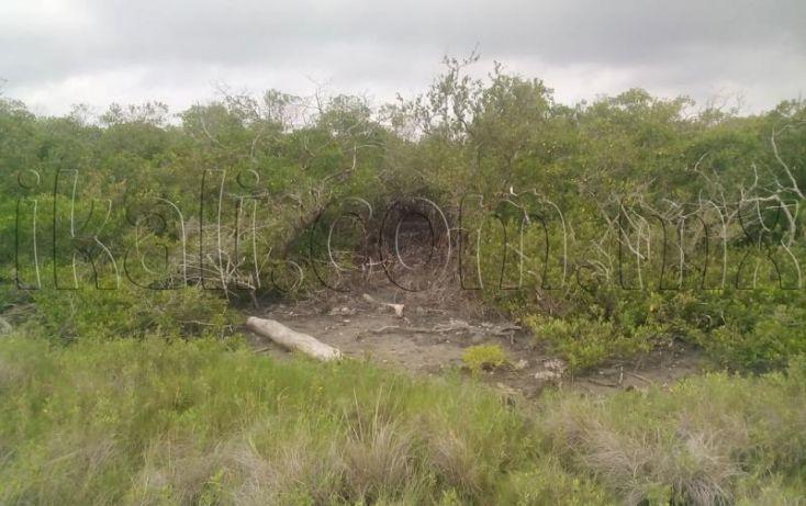 Foto de terreno habitacional en venta en sn, el paraíso, tuxpan, veracruz, 1223839 no 10