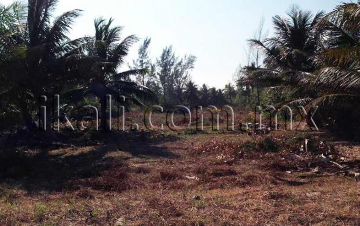 Foto de terreno habitacional en venta en sn, el paraíso, tuxpan, veracruz, 584005 no 01