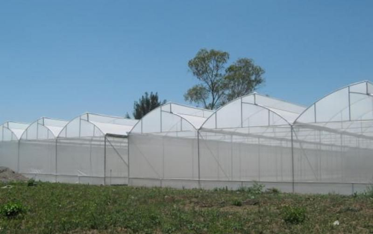 Foto de terreno comercial en venta en  , solares grandes, atlixco, puebla, 1171623 No. 06