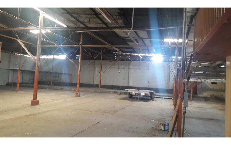 Foto de nave industrial en renta en  , soler, tijuana, baja california, 1478509 No. 06