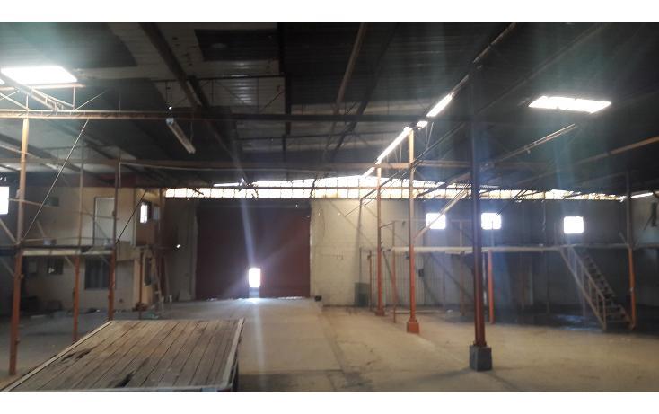 Foto de nave industrial en renta en  , soler, tijuana, baja california, 1478509 No. 07