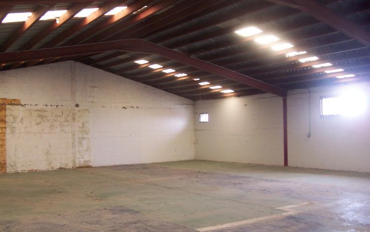 Foto de nave industrial en renta en  , soler, tijuana, baja california, 2002445 No. 02
