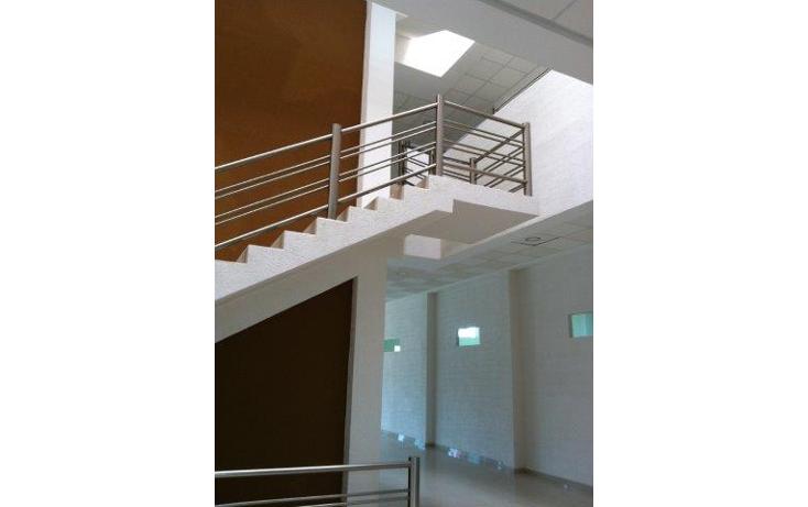 Foto de oficina en renta en  , solidaridad, othón p. blanco, quintana roo, 1283009 No. 05