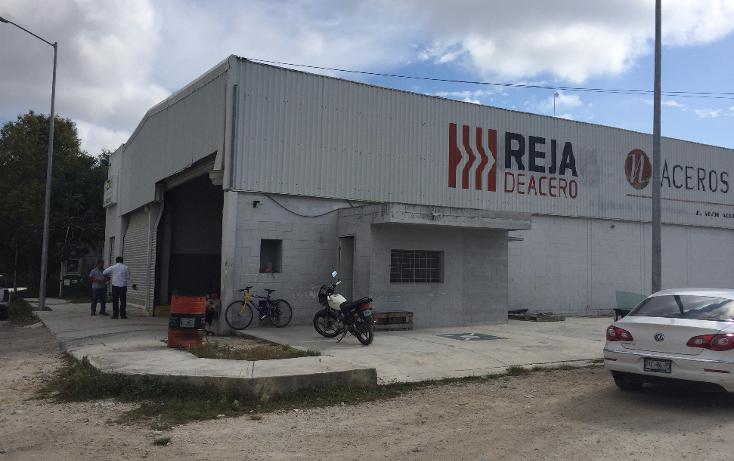 Foto de nave industrial en renta en  , solidaridad, oth?n p. blanco, quintana roo, 1733262 No. 21