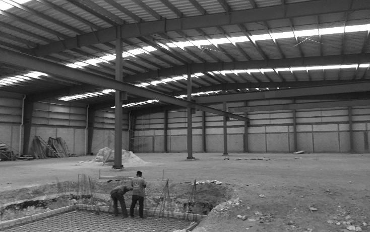 Foto de nave industrial en renta en  , solidaridad, othón p. blanco, quintana roo, 1734282 No. 20