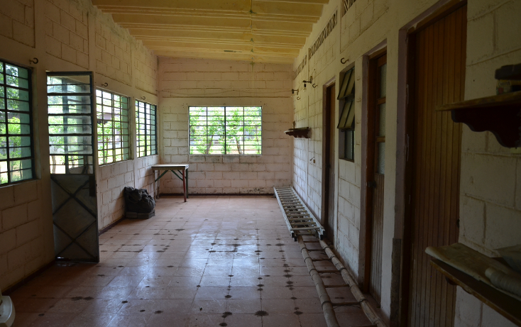 Foto de rancho en venta en  , sontecomapan, catemaco, veracruz de ignacio de la llave, 1516943 No. 04