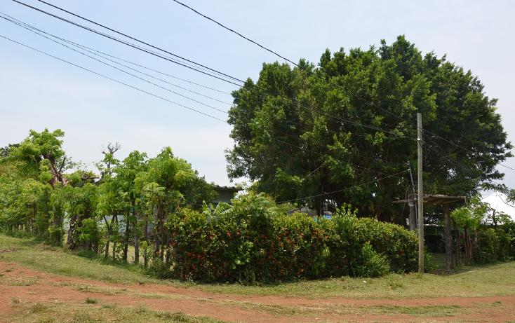 Foto de rancho en venta en  , sontecomapan, catemaco, veracruz de ignacio de la llave, 1516943 No. 05