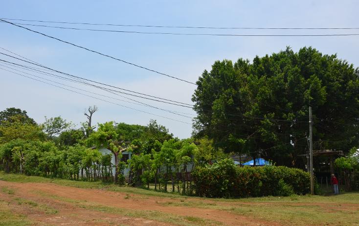 Foto de rancho en venta en  , sontecomapan, catemaco, veracruz de ignacio de la llave, 1516943 No. 07