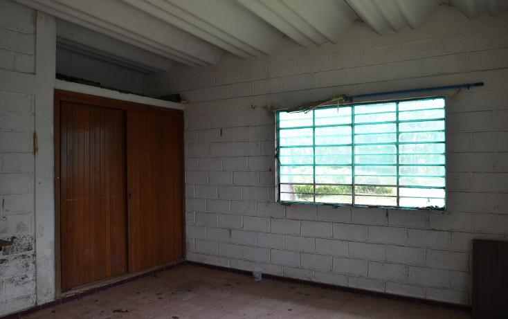 Foto de rancho en venta en  , sontecomapan, catemaco, veracruz de ignacio de la llave, 1516943 No. 09