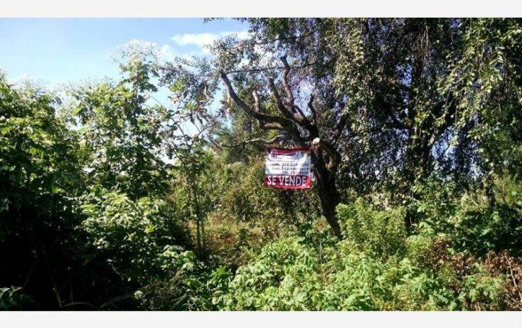 Foto de terreno habitacional en venta en , suchitlán, comala, colima, 1611916 no 02