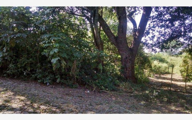 Foto de terreno habitacional en venta en , suchitlán, comala, colima, 1611916 no 03