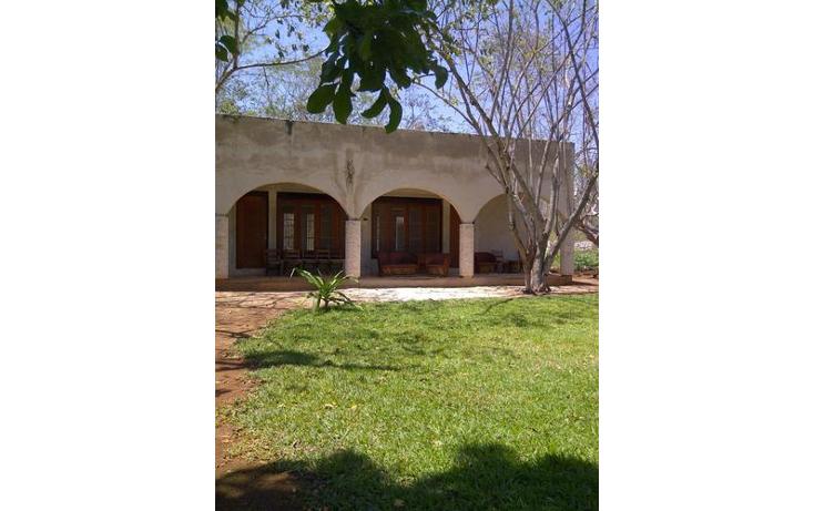 Foto de terreno habitacional en venta en  , sudzal, sudzal, yucat?n, 1088441 No. 02