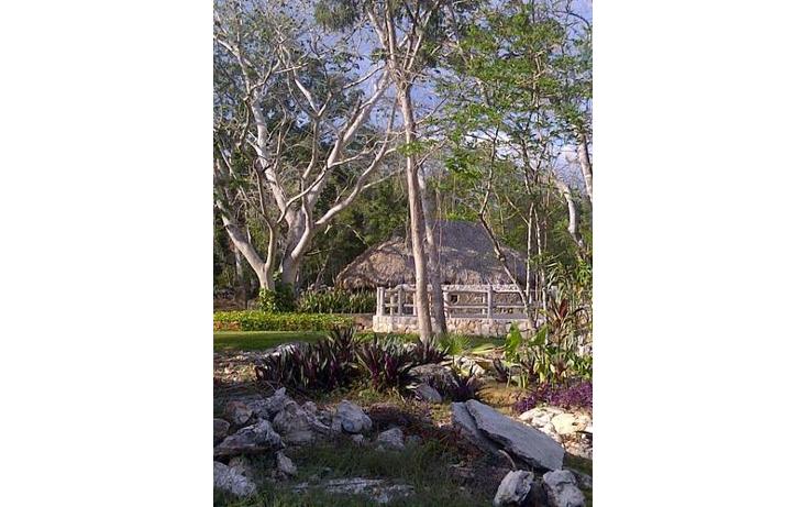 Foto de terreno habitacional en venta en  , sudzal, sudzal, yucat?n, 1088441 No. 06