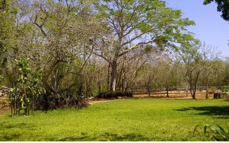 Foto de terreno habitacional en venta en  , sudzal, sudzal, yucat?n, 1088441 No. 15