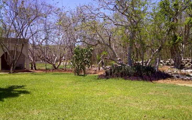 Foto de terreno habitacional en venta en  , sudzal, sudzal, yucat?n, 1088441 No. 18
