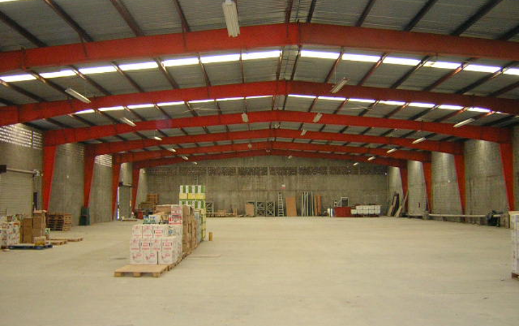 Foto de nave industrial en renta en  , supermanzana 10, benito juárez, quintana roo, 1191299 No. 01