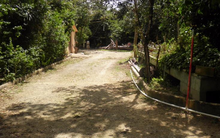 Foto de terreno comercial en venta en  , supermanzana 106, benito juárez, quintana roo, 1052533 No. 01