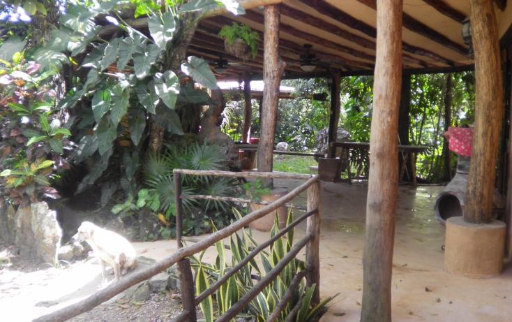 Foto de terreno comercial en venta en  , supermanzana 106, benito juárez, quintana roo, 1052533 No. 04