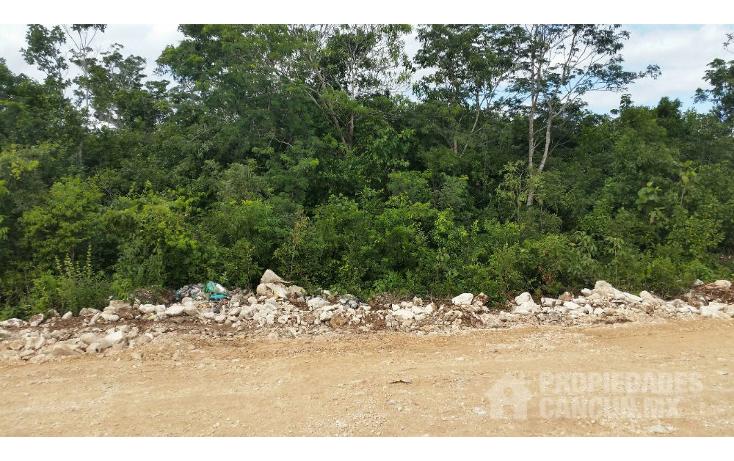 Foto de terreno habitacional en venta en  , supermanzana 20 centro, benito ju?rez, quintana roo, 1568928 No. 03