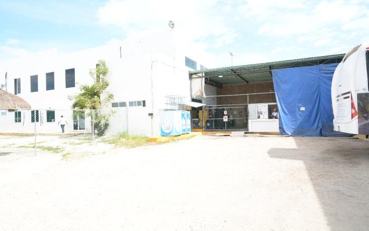 Foto de edificio en renta en  , supermanzana 248, benito juárez, quintana roo, 1774634 No. 16