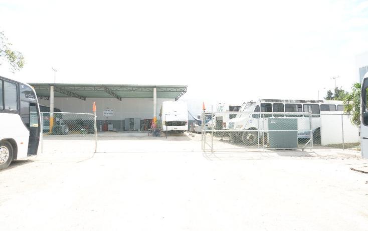 Foto de edificio en renta en  , supermanzana 248, benito juárez, quintana roo, 1774634 No. 21