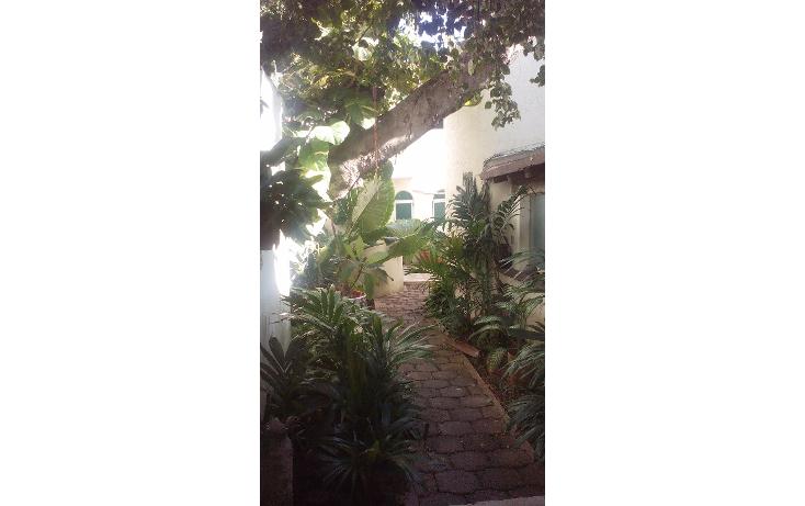 Foto de departamento en renta en  , supermanzana 27, benito juárez, quintana roo, 1665672 No. 01