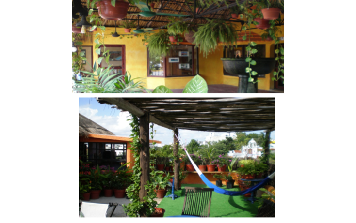 Foto de local en venta en  , supermanzana 3 centro, benito juárez, quintana roo, 1269549 No. 02