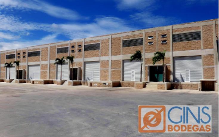 Foto de nave industrial en renta en  , supermanzana 301, benito juárez, quintana roo, 1331771 No. 02