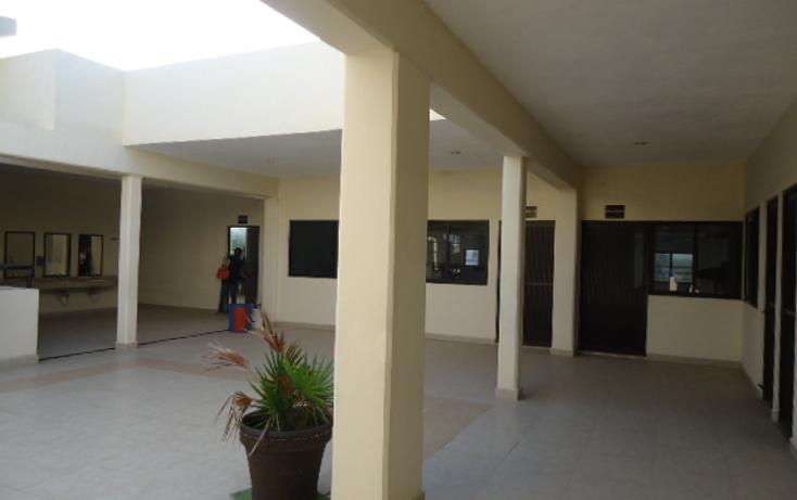 Foto de edificio en renta en  , supermanzana 312, benito juárez, quintana roo, 1109533 No. 13