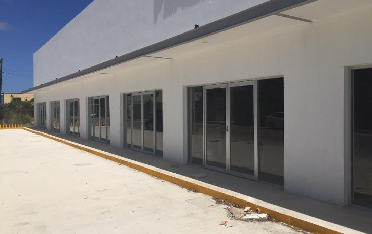 Foto de local en renta en  , supermanzana 312, benito juárez, quintana roo, 1278719 No. 03