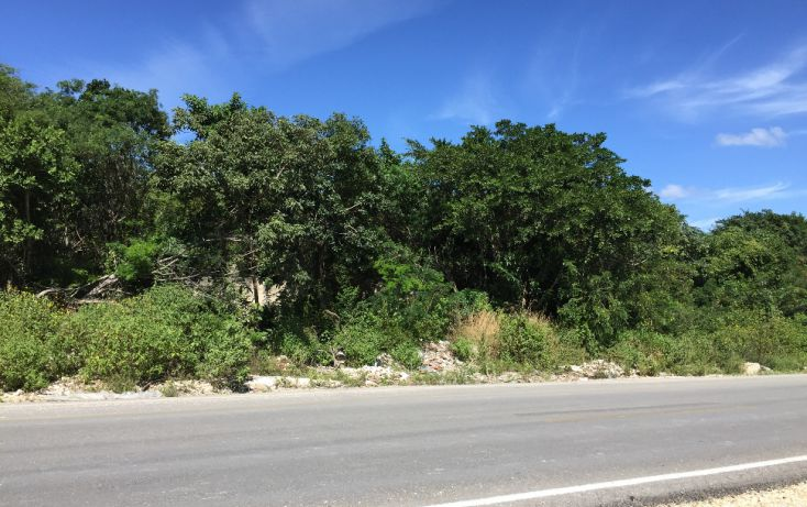 Foto de terreno comercial en venta en, supermanzana 312, benito juárez, quintana roo, 1678306 no 01