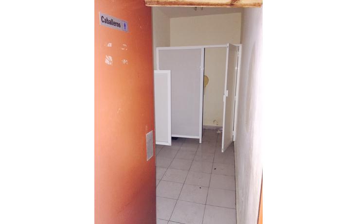 Foto de edificio en renta en  , supermanzana 65, benito juárez, quintana roo, 1309465 No. 20