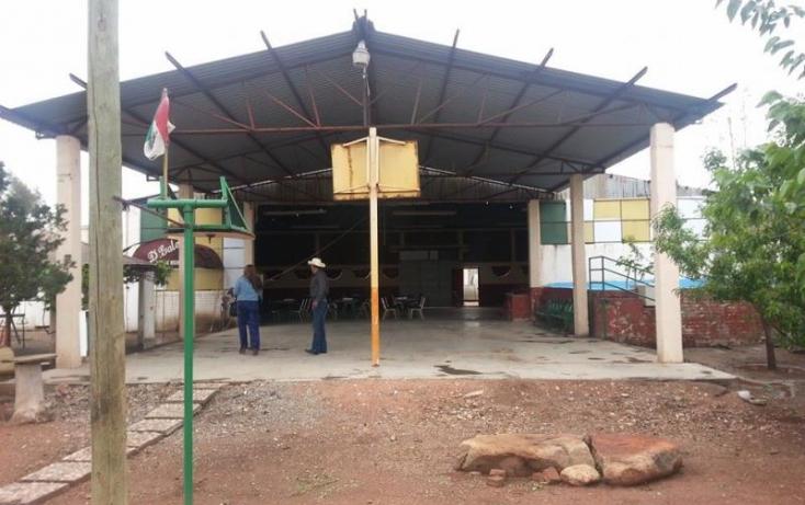Foto de rancho en venta en, tabalaopa, chihuahua, chihuahua, 877975 no 09
