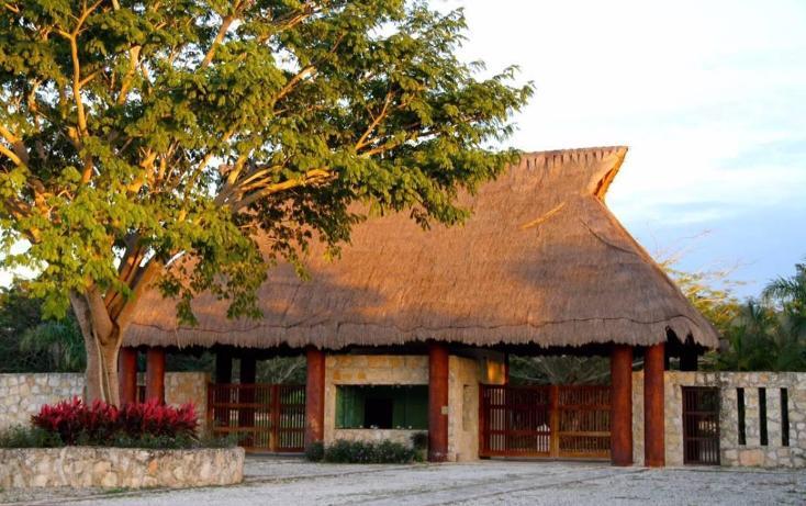 Foto de terreno habitacional en venta en tablaje 32711 , dzibilchaltún, mérida, yucatán, 3423694 No. 06